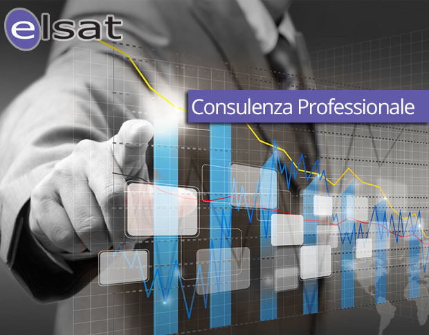 Consulenza Professionale
